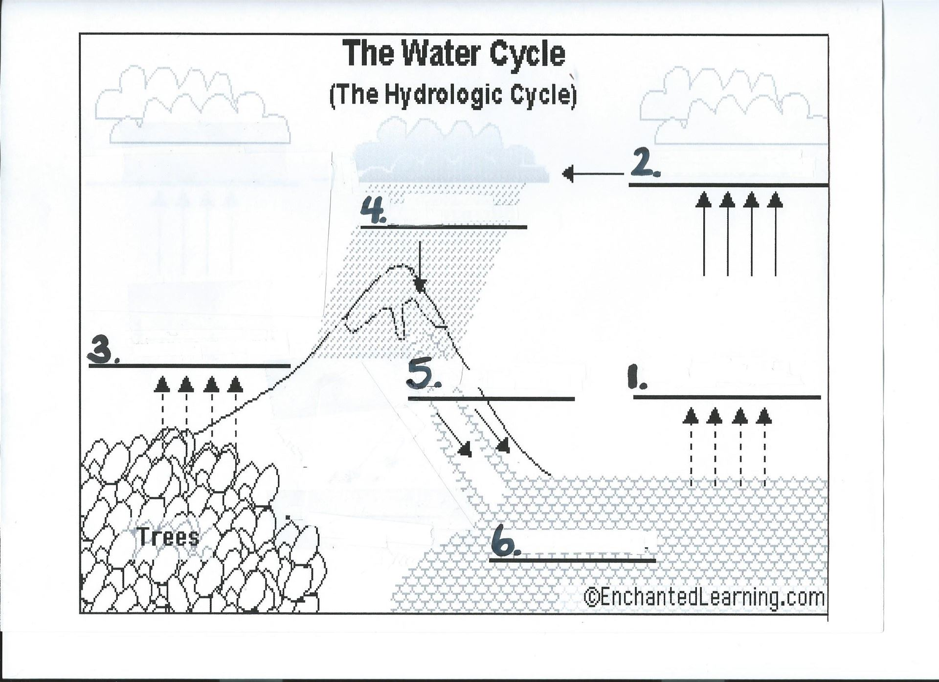 The Water Cycle Template